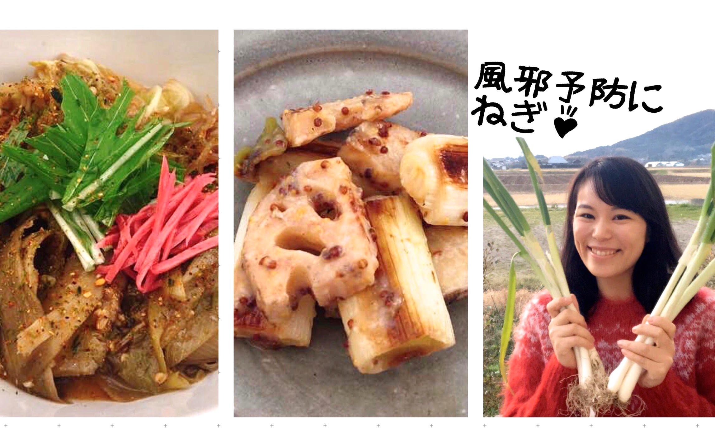 【レシピ提供】ねぎ×発酵調味料づくしのレシピ、4品を考案しました!