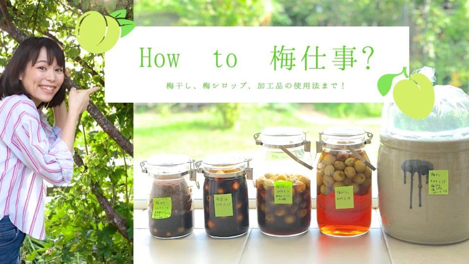 【保存版】我が家の梅仕事のすべて! 梅干し、梅醤油、梅シロップetc……とその活用法。